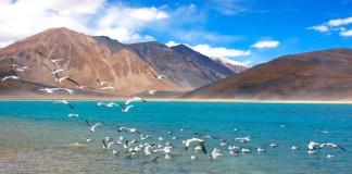 Pangong Lake –Ladakh
