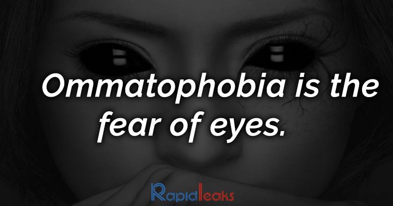 Phobia Fact
