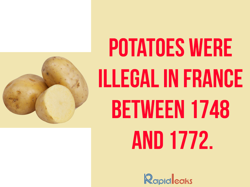 Did You Know About These Weird And Funny Facts About France?