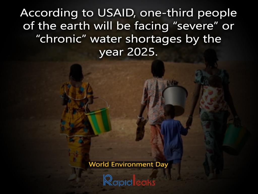 World Environment Day 11