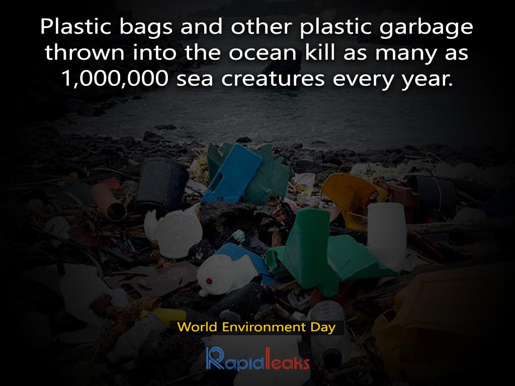 World Environment Day 13