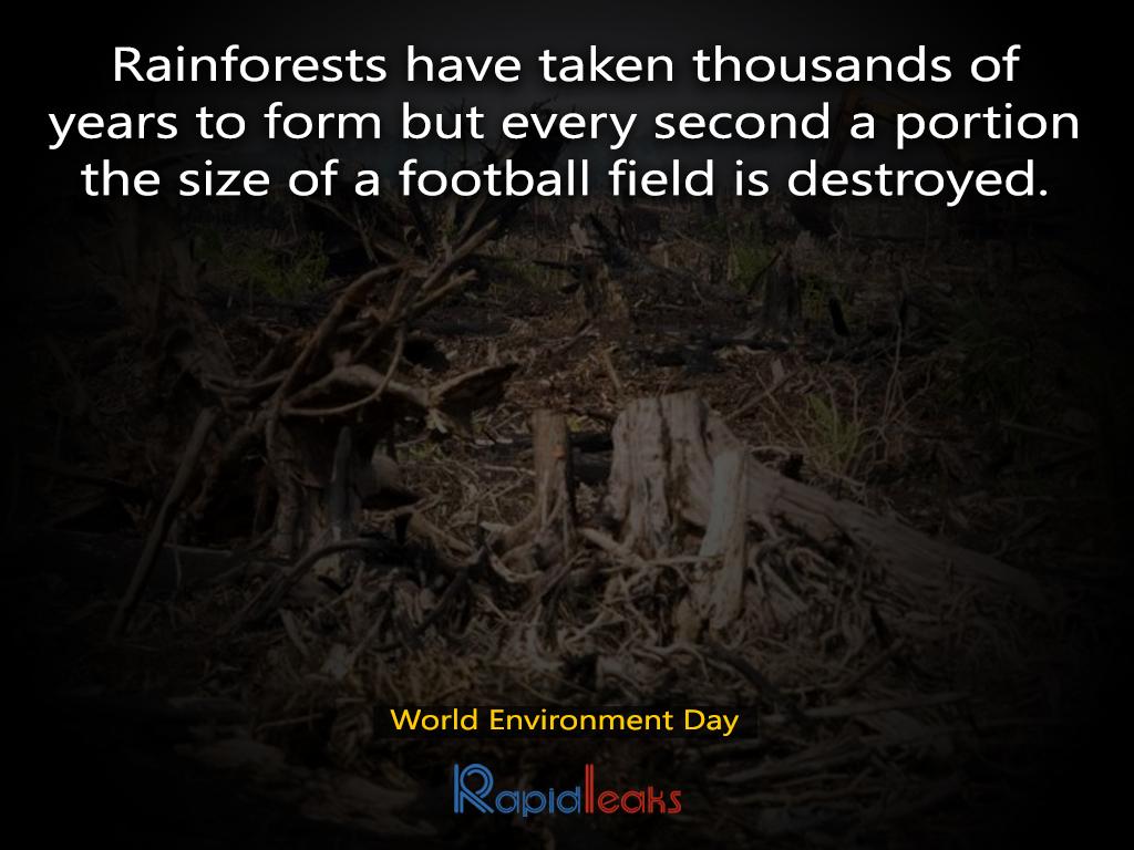 World Environment Day 14