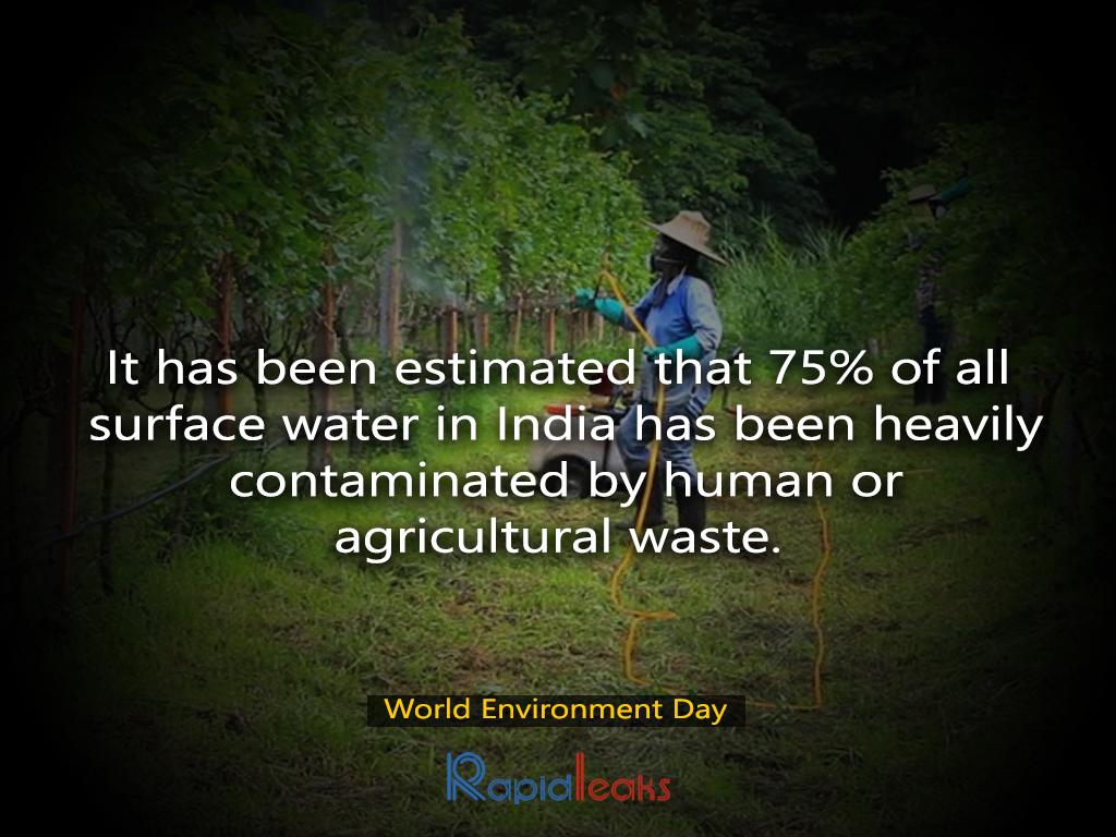 World Environment Day 2