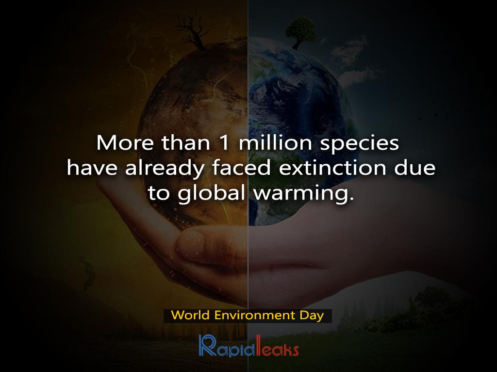 World Environment Day 5
