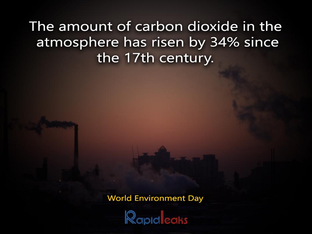 World Environment Day 7