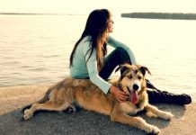 Amazing Reasons To Date A Girl Who Insanely Loves Dogs