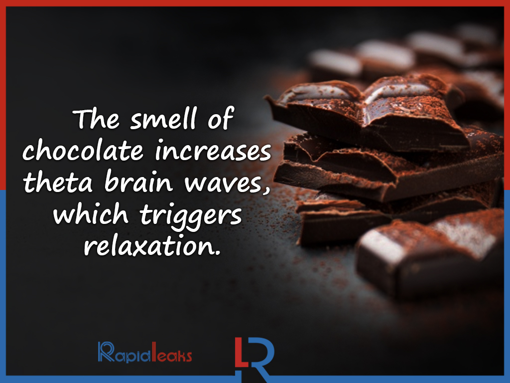 Chocolate Facts 1