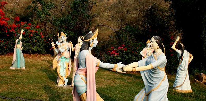 Image Source: pinkcityroyals.com