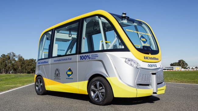 driverless busses