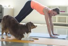 Yoga Doggie Style is called Doga