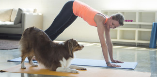 Yoga Doggie Style is called Doga