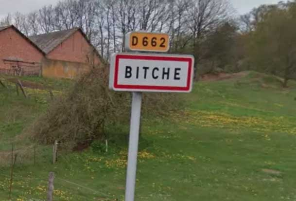 bitche