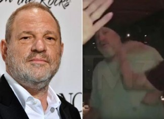 harvey weinstein slapped