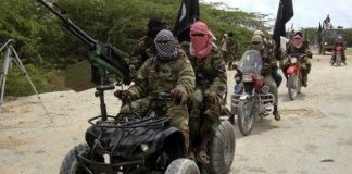 Dreaded Terror Outfit Boko Haram Frees 13 Hostages in Nigeria