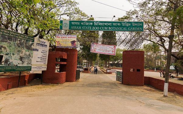 Assam State Zoo cum Botanical Garden, Guwahati