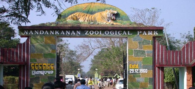 Nandankanan Zoological Park,