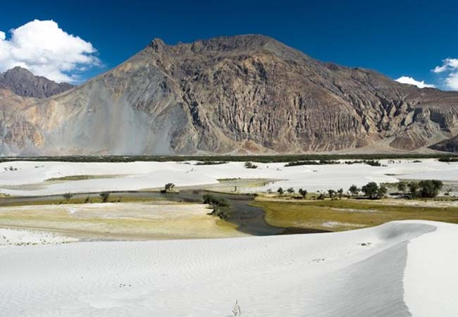 riverside nubra valley