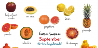 best seasonal fruits for September