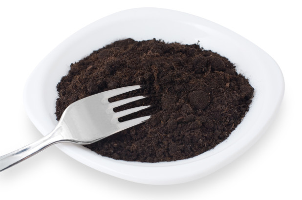 eating dirt for obesity
