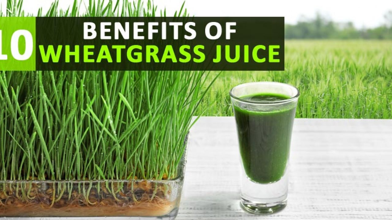 10 health benefits of wheatgrass juice that proves it is a