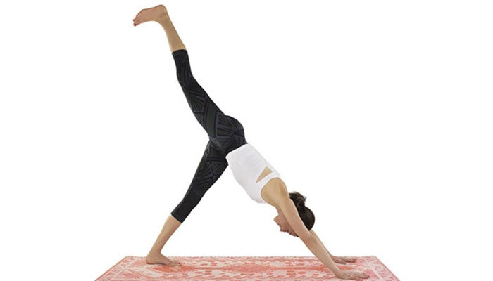 Eka Pada Adho Mukha Svanasana (One-Legged Downward-Facing Dog Pose)