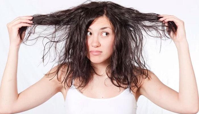 Oily Hair-Fix Hair Problems