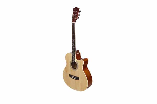 Acoustic Guitar India