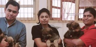 mumbai police german shepherd puppies
