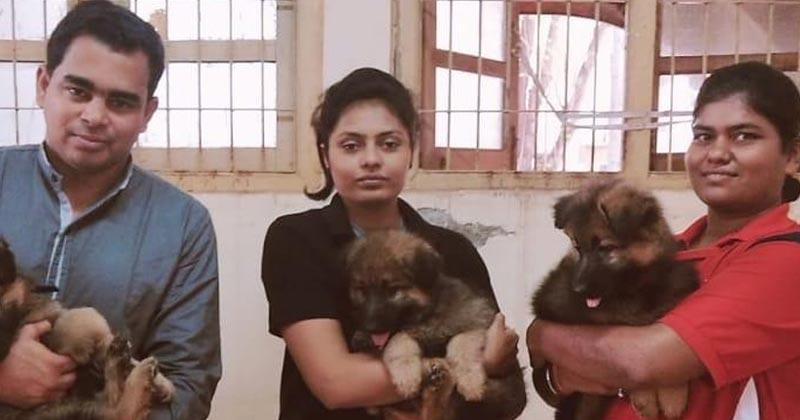 mumbai police german shepherd puppies