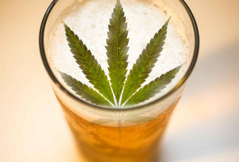Cannabis-Infused Beer