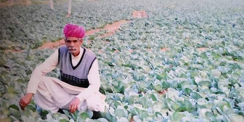 Jagdish Parikh Farmer