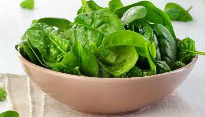 spinach in dengue