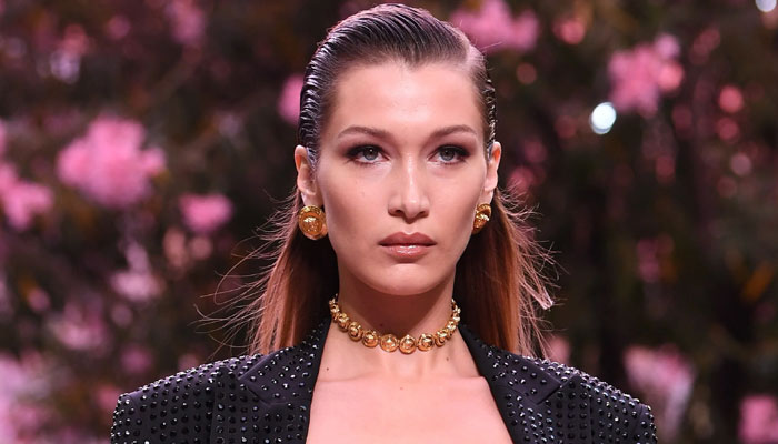 Bella hadid supermodel