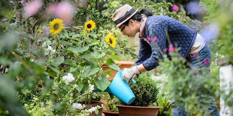 Gardening Requirements
