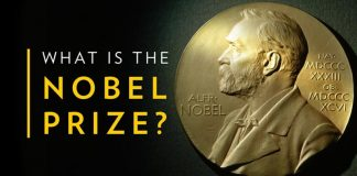 What is Nobel Prize