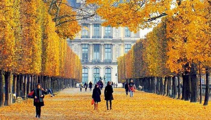 Picnic In The Tuileries Garden