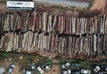 rise in deforestation in Amazon rainforest
