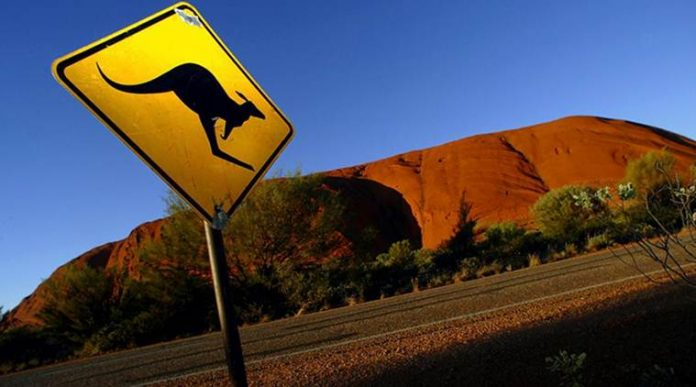 sanctions against kangaroo slaughter