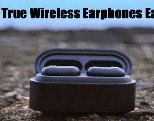 5 Best True Wireless Earbuds Earphones Under 5000