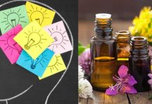 Essential Oils For Focus And Memory