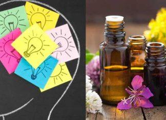 Essential Oils For Focus And Memory