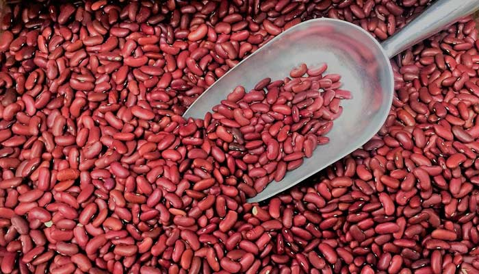 Best vegan sources of protein- Kidney Beans