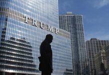 Donald Trump Salary and Assets