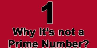 Why 1 is not a prime number