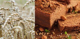 Why Is Gluten Bad