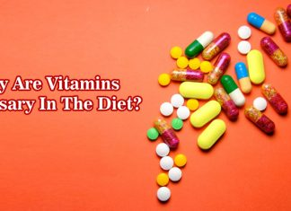 Why Are Vitamins Necessary In The Diet