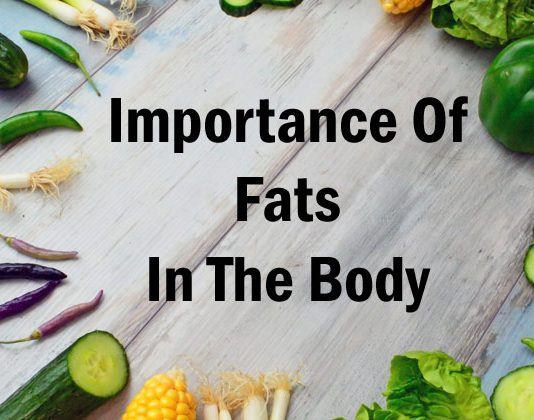 Importance of Fats