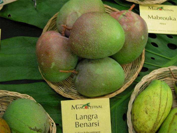 Langra Mangoes