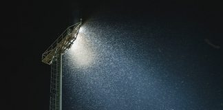 Why Are Insects Attracted To Light