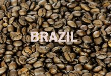 coffee in Brazil